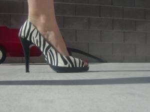 zebra heels 004