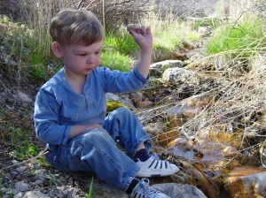 Throwing Rocks